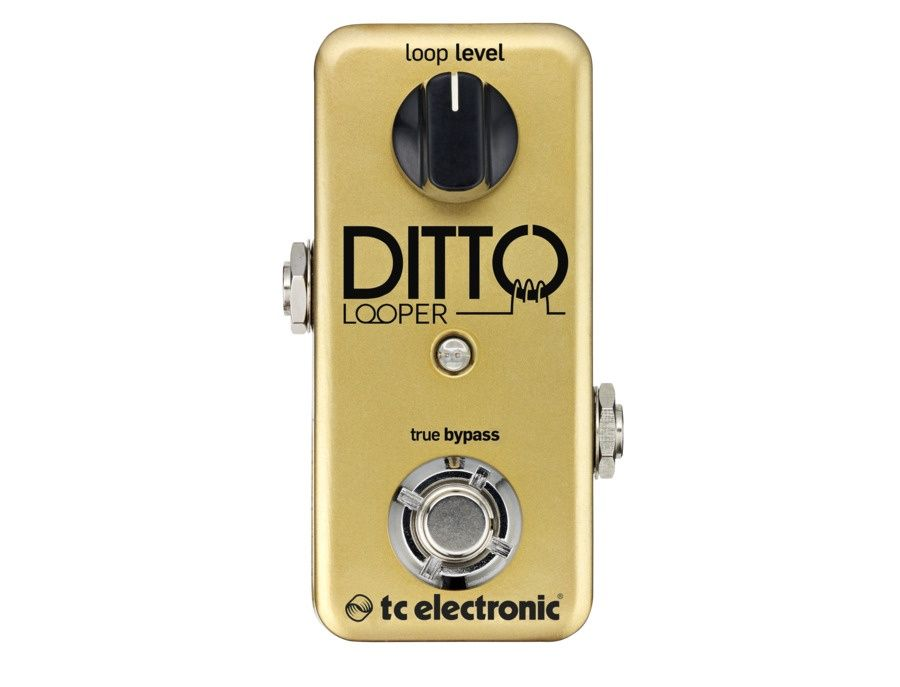 TC Electronic Ditto Looper Guitar Effects Pedal Limited Gold Edition Picture